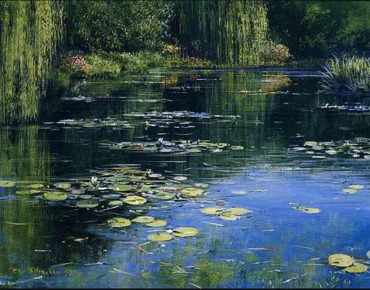 Wanderstarr Nameless Pond Aka Monet S Pond In Japan